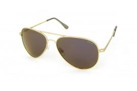 Очки Polaroid P4139J (Солнцезащитные очки унисекс)